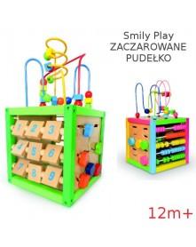 Smily Play Zaczarowane pudełko 12m+  DT5017