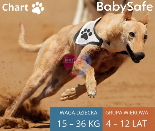 BabySafe Chart 15-36 baner